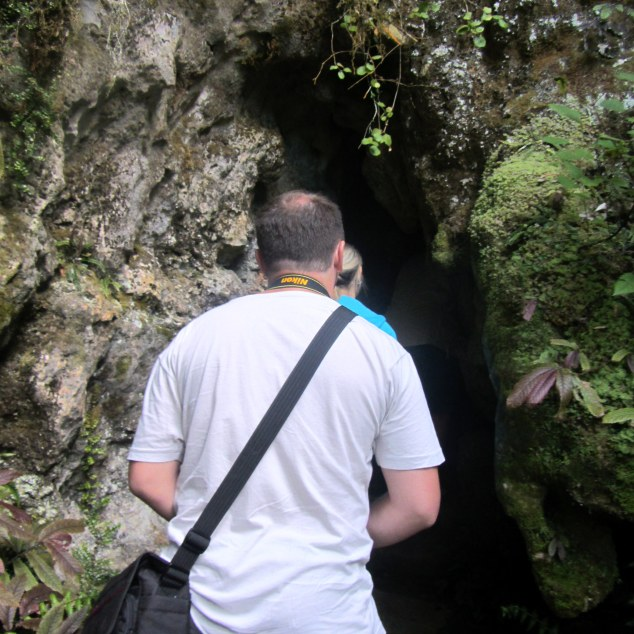 Entrance to Aranui Cave