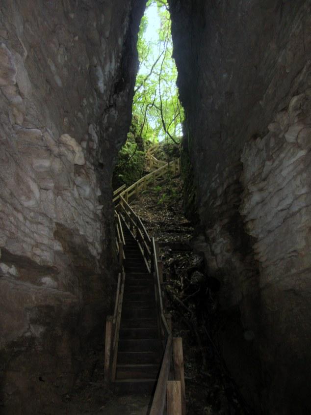 Te Anaroa Cave (Footwhistle Glowworm Cave)