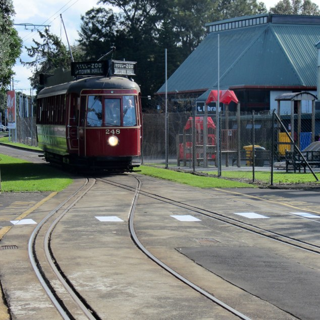 Tram approaching MOTAT, Great North Road, Western Springs