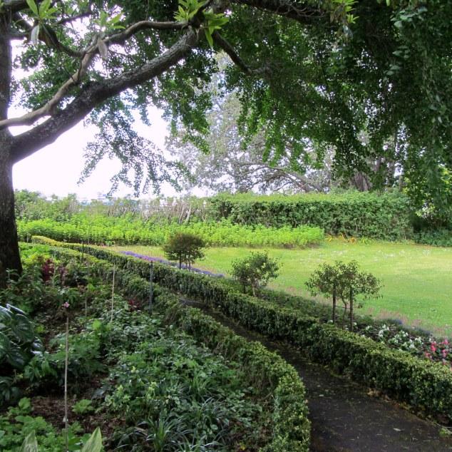 Hedged garden