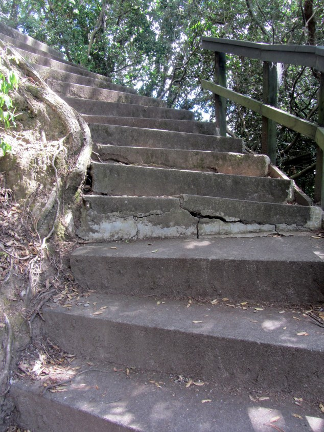 Steps up to Point Erin Park