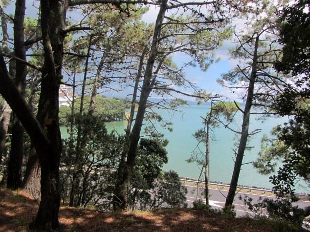 Point Erin Park