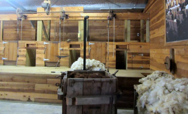 Shearing Museum