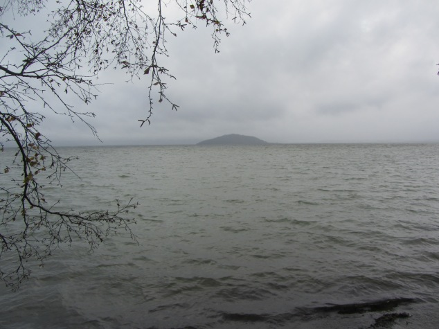 Looking out to Mokoia Island on a grey winter morning