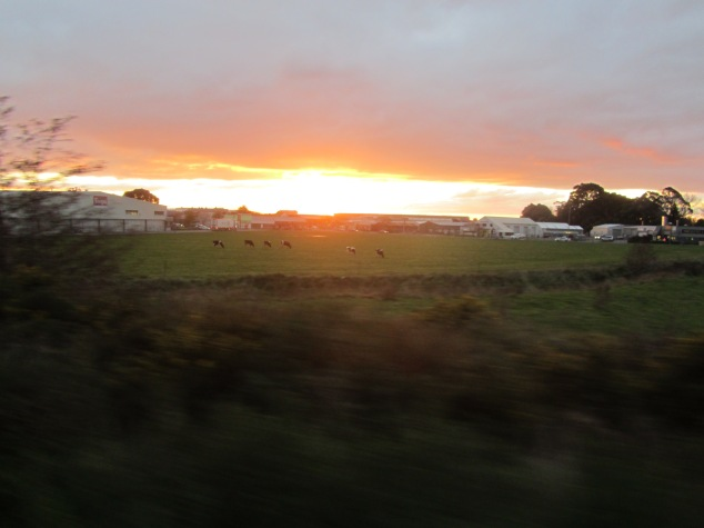 Sun setting as the train approaches Palmerston North
