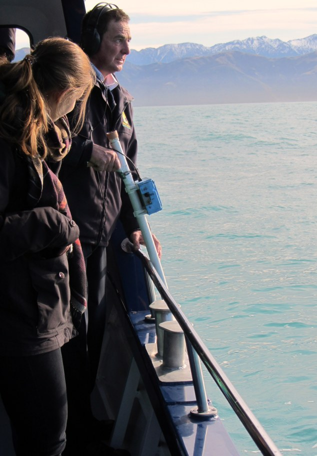 Crew member tracking whale movements