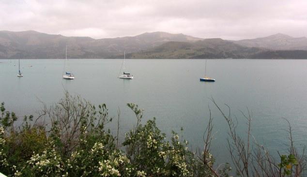 Views from Akaroa Lighthouse