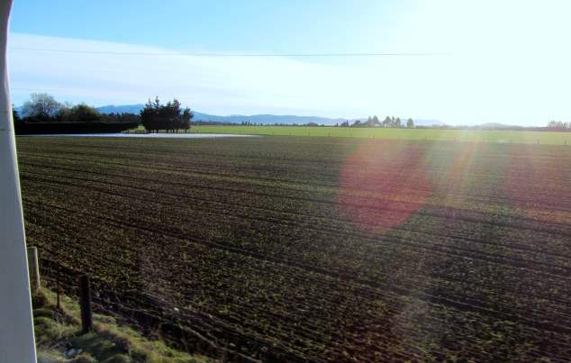 TranzAlpine crosses Canterbury plain